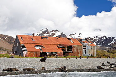 Views of Stromness Whaling Station, South Georgia Island in the Southern Ocean, Antarctica