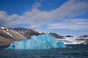 Calved icebergs from the glaciers at Blomstrandhalvøya in Kongsfjord on the western side of Spitsbergen in the Svalbard Archipelago, Norway.