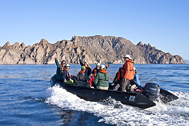 Zodiac from the Lindblad expedition ship National Geographic Sea Lion staff in the Gulf of California (Sea of Cortez) near the Baja Peninsula, Mexico.
