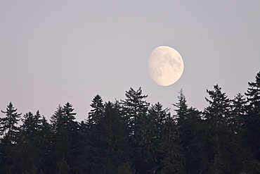 Moonrise over the ocean just outside Petersburg in Southeast Alaska, USA.