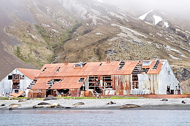 Views of the abandoned whaling station at Stromness Harbor on South Georgia Island, Southern Ocean