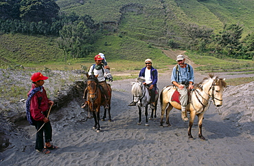 Moving camera crew and equipment on horse back to filmm Mount Bromo.  Java, Indonesia