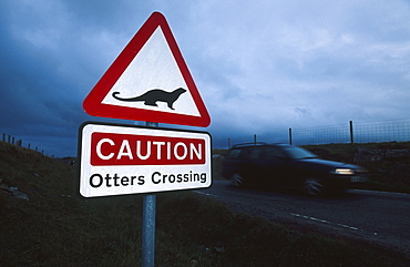 sign warning motorists of crossing otters, north uist, scotland