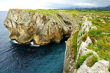 Karst limestone sea cliffs at Pria, with Picos de Europa mountains in the background, near Llanes, Asturias, Spain, Europe