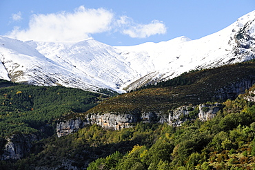 Limestone escarpments above Escuain gorge with snow covered high Pyrenees peaks in the background, Huesca, Aragon, Spain, Europe