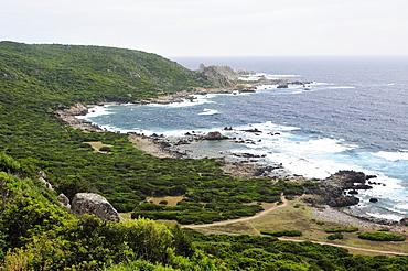 Rocky granitic coastline on a stormy day fringed by coastal maquis scrub, Campomoro Point, near Propriano, Corsica, France.