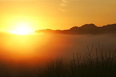 Glen Nant with sun setting over low lying cloud. Argyll, Scotland