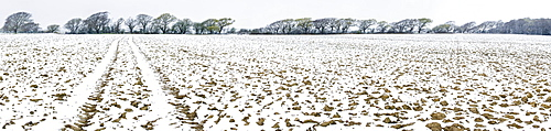 Light dusting of snow on ploughed field, West Sussex, England, United Kingdom, Europe