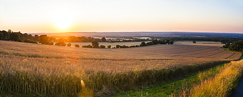 Sunset over fields just outside Guildford, Surrey, England, United Kingdom, Europe