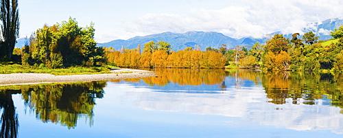 Reflection of autumn trees on the Takaka River, Golden Bay, Tasman Region, South Island, New Zealand, Pacific
