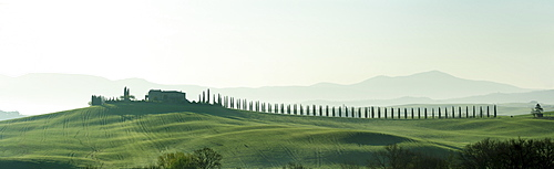 Panorama of a manor with an alley of cypresses, Val d¥Orcia, UNESCO World Heritage Site Val d¥Orcia, Tuscany, Italy