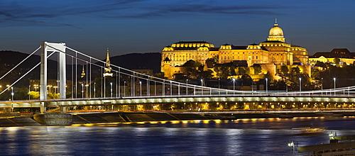 Buda Castle and Elisabeth bridge in the evening light, Buda, Budapest, Hungary