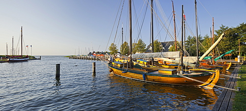 Althagen harbour with sailing boat, Zeesenboot, Ahrenshoop, Barther Bodden, Mecklenburg-Western Pomerania, Germany