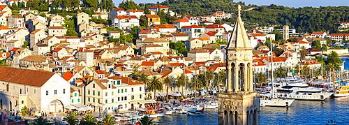 Elevated view over the picturesque harbour town of Hvar, Hvar, Dalmatia, Croatia, Europe - 1158-481