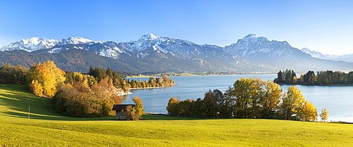 View over Lake Forggensee to the Alps, Allgau, Bavaria, Germay, Europe