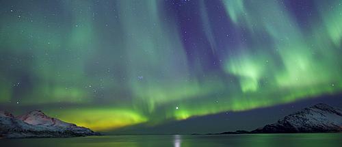 Aurora Borealis spectacular Northern Lights green and purple curtain effect and Venus star at Grotfjord, Kvaloya island, Tromso, Arctic Circle, Northern Norway
