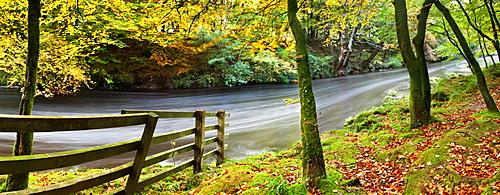 River Dart, Dartmoor National Park, Devon, England, United Kingdom, Europe