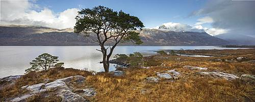 Stitched panoramic of Loch Maree and Slioch after a series of passing rain showers, Wester Ross, North West Highlands, Scotland, United Kingdom, Europe