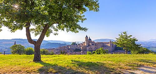 View from the Albornoz Fortress, Urbino, Marche, Italy, Europe