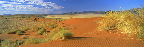 Panoramic view over orange sand dunes towards the mountains, Namib Rand private game reserve, Namibia, Africa