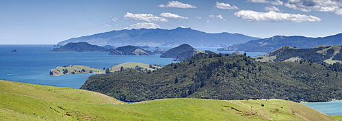 Looking north from lookout, South of Manaia, State Highway 25, Coromandel Harbour, Coromandel Peninsula, North Island, New Zealand, Pacific