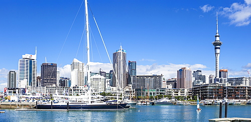 Viaduct Harbour waterfront area and Auckland Marina, Auckland skyline, Sky Tower, Auckland, North Island, New Zealand, Pacific