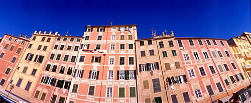 Houses, Camogli, Liguria, Italy