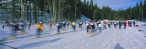 Cross country ski racers Canmore Alberta Canada