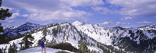 Rear view of a man standing on a snowcapped mountain, Trinity Alps, Humboldt, California, USA