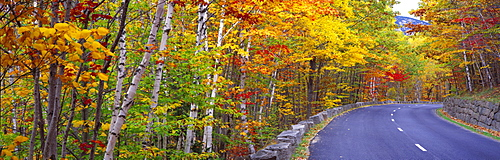 Park Loop Road Acadia National Park ME