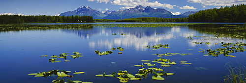 Reflection of a mountain and clouds in a lake, Mt Foraker, Mt McKinley, Alpine Lake, Denali National Park, Alaska, USA