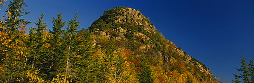 Low angle view of a hill, Acadia National Park, Hancock County, Maine, USA