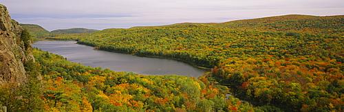High angle view of trees in the forest, Porcupine Mountains Wilderness State Park, Upper Peninsula, Michigan, USA