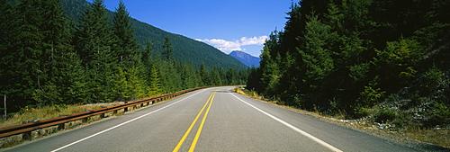 Road passing through a forest, State Route 20, Washington State, USA