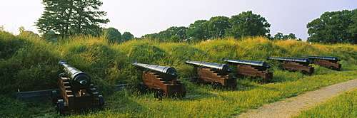Row of cannons on a field, Yorktown, Virginia, USA