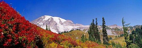 Low angle view of a snowcapped mountain, Mt Rainier, Mt Rainier National Park, Washington State, USA
