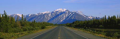 Plants on both sides of a highway, St. Elias Mountains, Yukon, Canada