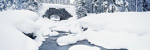 Snow covered bridge over a river, Illecillewaet River, British Columbia Glacier National Park, British Columbia, Canada