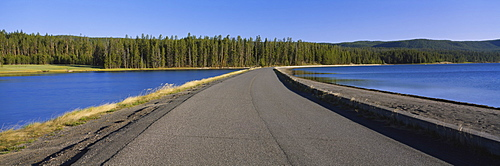 Road running through a landscape, Bridge Bay, Yellowstone Lake, Yellowstone National Park, Teton County, Wyoming, USA