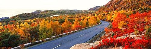 Park Loop Road Acadia National Park ME USA