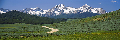 High angle view of a dirt road running through the field, Sawtooth National Recreation Area, Stanley, Idaho, USA