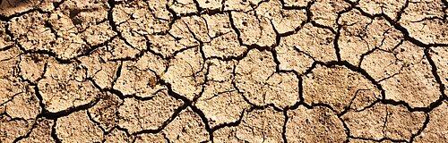 Cracked mud in a desert, San Benito County, California, USA