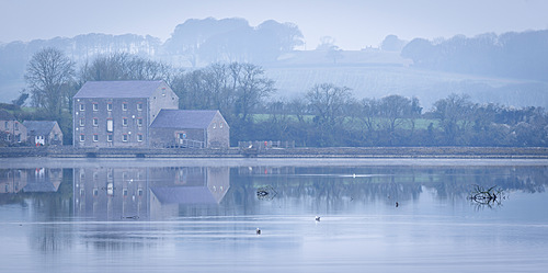 Carew Tidal Mill, on a misty Spring morning, Pembrokeshire, Wales, United Kingdom, Europe