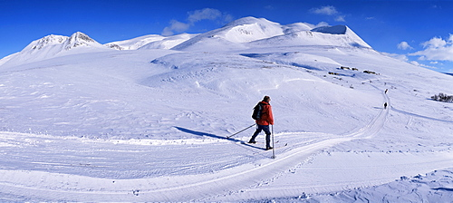 Track from Smuksjoseter towards Peer Gynt-hytta and Mount Smiubelgen, Rondane National Park, Oppland, Norway, Scandinavia, Europe