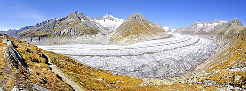 View from the Aletsch Panorama Trail down to the 23, 1 km long Aletsch Glacier, Canton of Valais, Switzerland, Europe