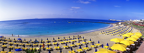 Yellow sun umbrellas on a sandy beach, Playa Dorada, Playa Blanca, Lanzarote, Canary Islands, Spain, Europe