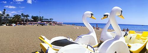 Swan paddle boats on a sandy beach, Playa Grande, Puerto del Carmen, Lanzarote, Canary Islands, Spain, Europe