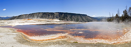 Panoramic view, view of Mount Everts from the Canary Spring, Mammoth Hot Springs, Yellowstone National Park, Wyoming, USA