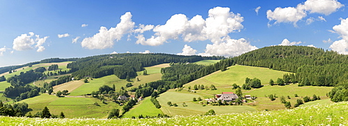 Glottertal valley near St. Maergen, Black Forest, Baden-Wuerttemberg, Germany, Europe