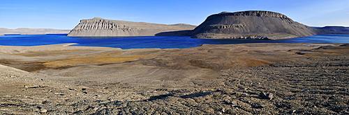 Arctic tundra at Maxwell Bay, Devon Island, Northwest Passage, Nunavut, Canada, Arctic